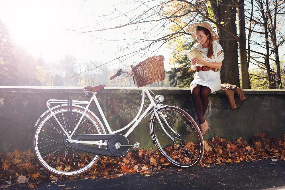 rowery holenderskie używane