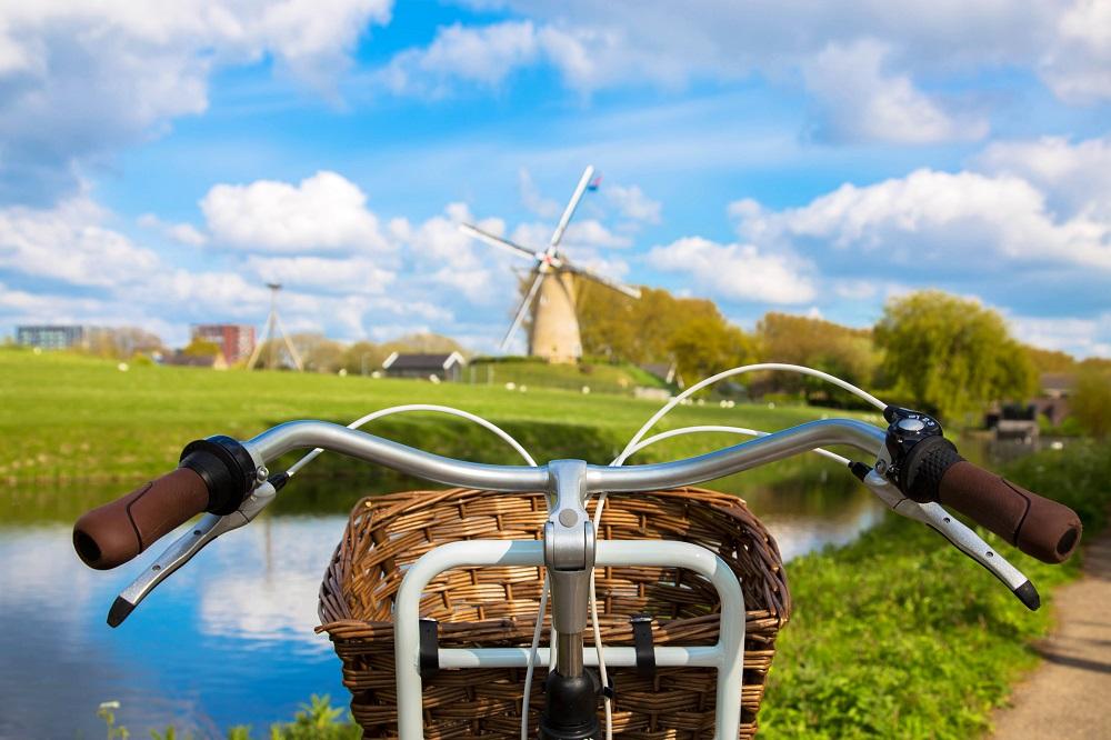 Rowery holenderskie – skąd ich rosnąca popularność?